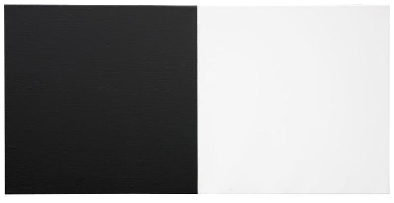 Untitled diptych (Black & White)